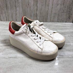 ASH Cult White & Red Platform Sneakers EU 37